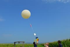 3.Launch