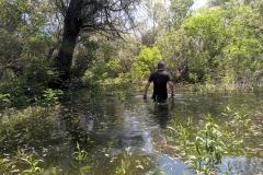 08. Flooded island
